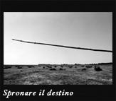 Spronare il destino, 2003