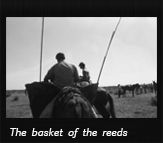 The basket of the reeds