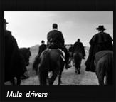Mule drivers