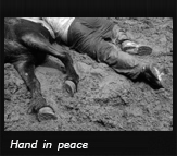 Hand in peace