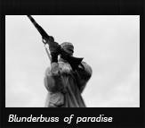 Blunderbuss of paradise