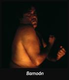 Barnoón
