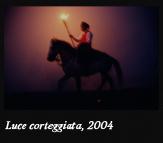 Luce corteggiata, 2004
