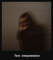 Twin interpretation