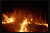 La quema III