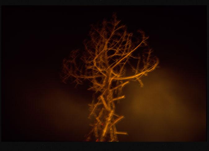 Seco frío quemado II