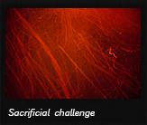 Sacrificial challenge