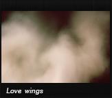Love wings