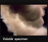 Volatile specimen